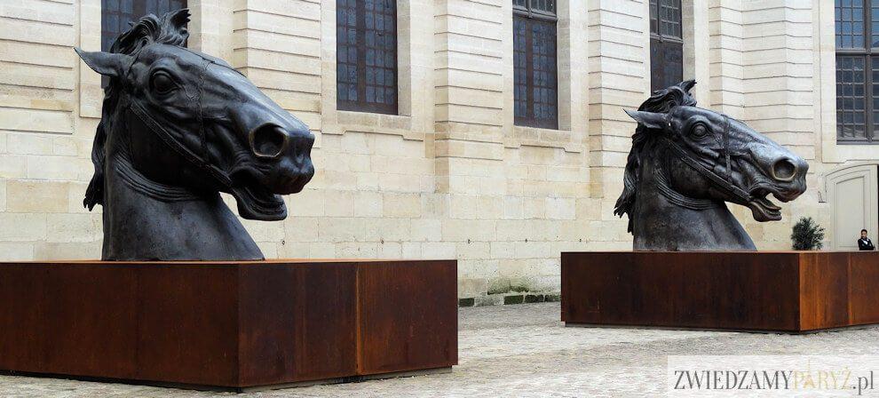 Zamek Chantilly - muzeum koni
